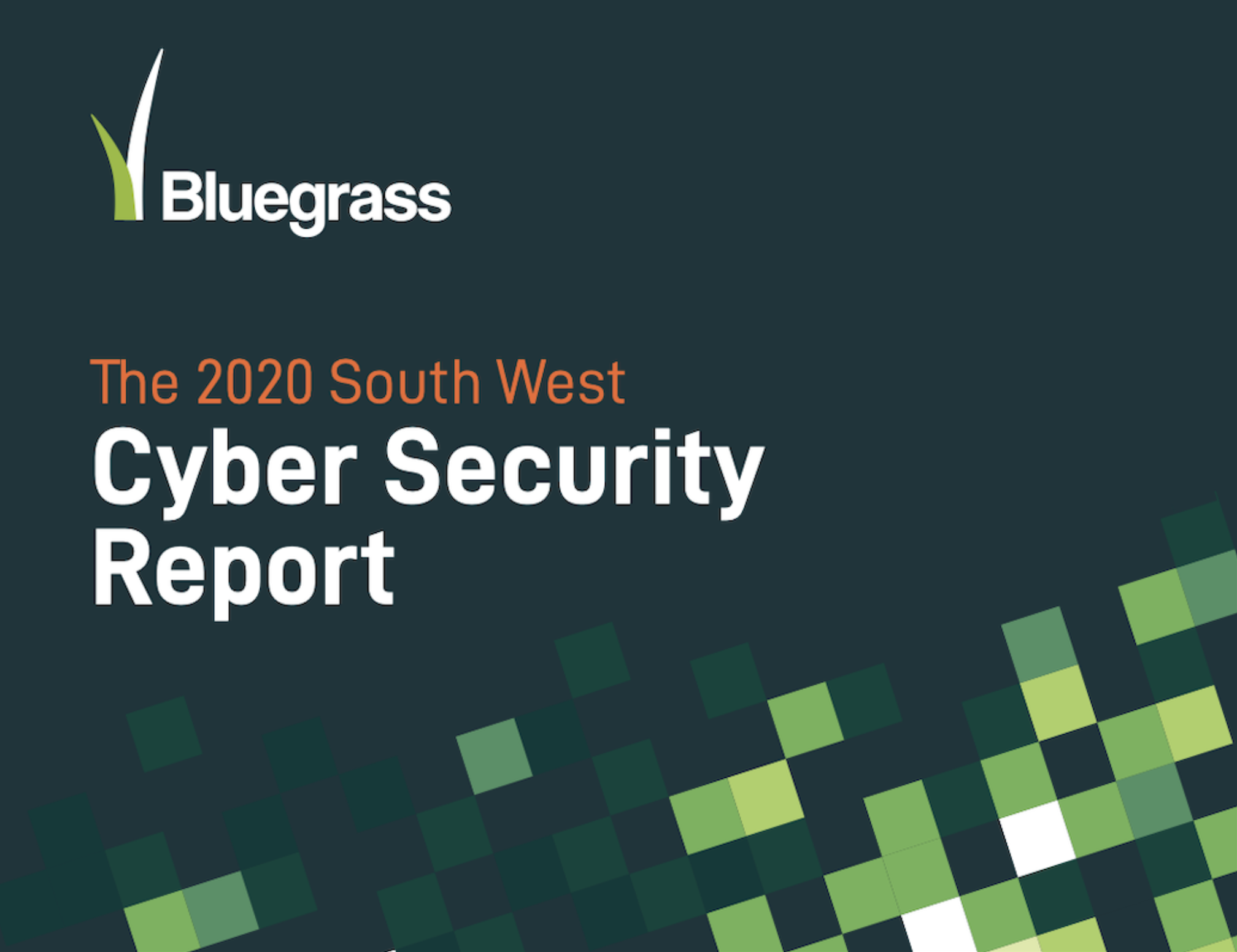 Cyber Report 2020